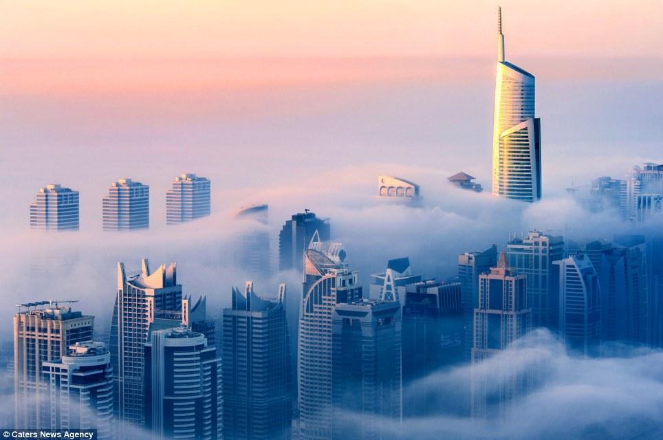 foto, dubai - grattacieli