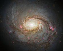 Fantastica! La galassia a spirale Messier 77 fotografata dal telescopio Hubble