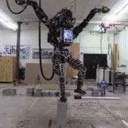 Io robot, tu licenziato: l'inquietante ascesa delle macchine che soppiantano il lavoro umano